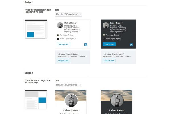 How to add your LinkedIn Profile to Your Website